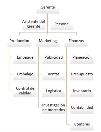 Estructura Funcional De La Organización Exporting Colombia
